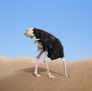 scared ostrich burying its head in sand concept