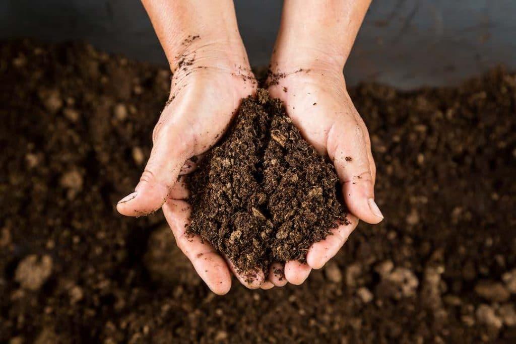 human composting